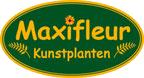 Maxifleur